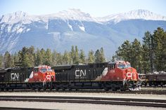CN trains with Roche Bonhomme also known as Old Man Mountain in the background. This is the view from the town of Jasper Alberta. @explorejasper #myjasper #explorejasper #jaspernationalpark #jnp #canada #wonderfulbynature #nature #park #train #trains #cnr #canada #venturebeyond by nanaimonina
