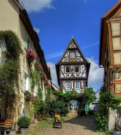 Bad Wimpfen, Germany                                                                                                                                                                                 More