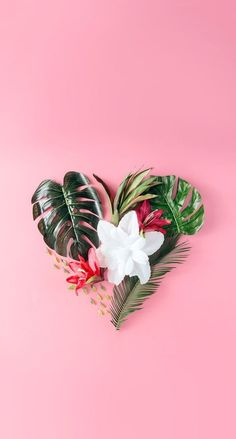 Flowers background iphone heart Ideas for 2019
