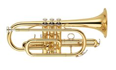Cornet - Playing music is a difficult art to master. Most of the people don't know how to play various musical instruments. But those who know, it's a great pastime.Some of the most popular musical instruments are mentioned below that every music lover should have.