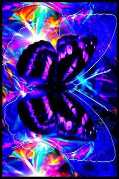 Neon. Light. Butterfly. Art. Graphic Design.
