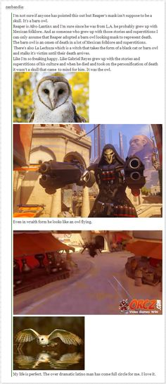 Image result for overwatch reaper owl