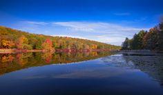 Autumn reflections - null