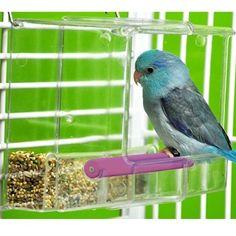 Acrylic Bird Cages