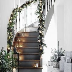 Christmas Decorations - Deck The Halls! - White Company - Fir and Snowberry…