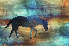 Featured on Fine Art America by Pamela Williams Photography #horse #equine #giftshop #artforsale #sharepamsart #photooftheday  https://3-pamela-williams.pixels.com/featured/11042-horse-pamela-williams.html?utm_content=buffer0038f&utm_medium=social&utm_source=pinterest.com&utm_campaign=buffer