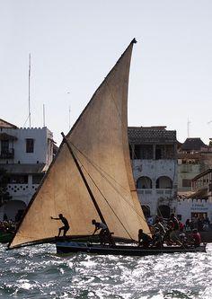 Maulidi dhow race - Lamu Kenya