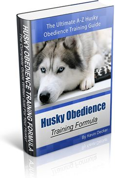 How Would You Like to Instantly Stop 21+ WORST Husky Behavior Problems With Just 7 Minutes a Day...