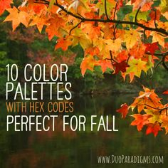 10 Color Palettes (and HEX Codes) Perfect for Fall