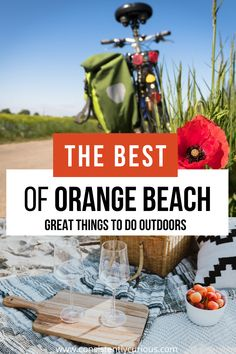 Experience the great outdoors with these cool outdoor things to do in Orange Beach and Gulf Shores. Kayak through the backwaters, enjoy a gourmet beach picnic and more! #orangebeach #orangebeachal #gulfshores #gulfshoresal #gulfshoresvacation #orangebeachvacation Florida Travel, Usa Travel, Travel Tips, Beach Vacations, Beach Trip, Family Road Trips, Family Travel, Road Trip Theme, Alabama Vacation