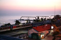 가장 빨리 새벽을 여는 대한민국 해돋이 1번지, 강릉 정동진