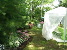 landscaping under pine trees. Azaleas and hostas do great in the shade with the acidic soil