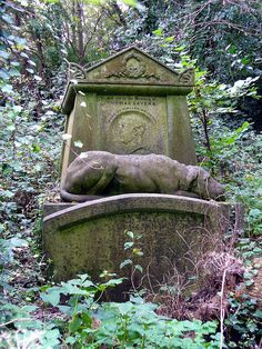 Highgate Cemetery in London is the grave of old Thomas Sayers. The townspeople had a statue made of his loyal dog Lion, to lay next to him for eternity. Cemetery Angels, Pet Cemetery, Cemetery Statues, Angel Statues, Cemetery Monuments, Cemetery Headstones, Old Cemeteries, Graveyards, Highgate Cemetery London