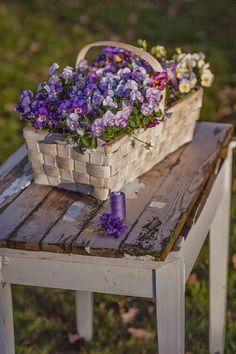 Pansies in a basket