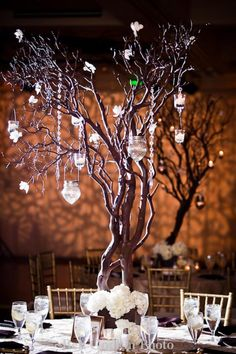 set of 2 manzanita branches natural fresh trimmed for DIY wedding Centerpieces Tree Wedding, Wedding Table, Floral Wedding, Enchanted Forest Wedding, Woodland Wedding, Branch Centerpieces, Wedding Centerpieces, Manzanita Branches, 50th Wedding Anniversary