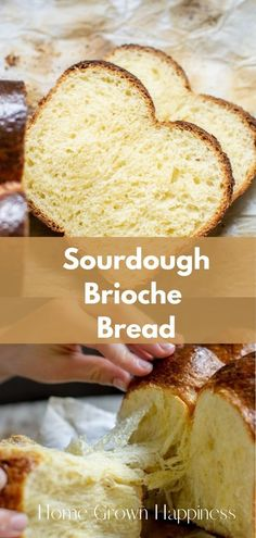 This delicious and tender homemade sourdough brioche bread is so good. Brioche dough is extra enriched, with lots of butter and eggs so the crumb is rich and tender. Homemade Brioche, Brioche Recipe, Brioche Bread, Homemade Breads, Sourdough Recipes, Sourdough Bread, Bread Recipes, Sicilian Recipes, Sicilian Food