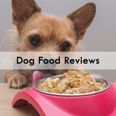 Types Of Dog Food, All Types Of Dogs, Dog Food Reviews, Pet Mat, The 5th Of November, Pets, Animals And Pets