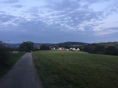 Laufend gebloggt: Fahrbachquellen und Kohlwald