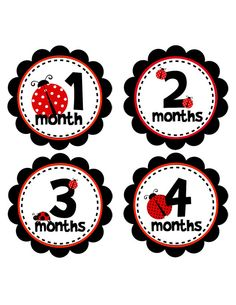 Monthly Onesie Sticker Ladybugs for Baby by BuddhaBellies on Etsy, $9.00