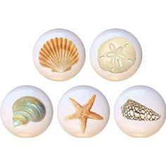 Beautiful Seashells Drawer Pulls Knobs Set of 5