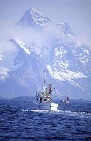 fiskebaat i Lofoten (fish boat) Stavanger, Beautiful Norway, Beautiful World, Lofoten, Oslo, Norwegian Vikings, Norway Viking, Safari, Visit Norway