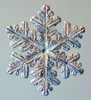 Is it possible for two snowflakes to be alike? Dr. Kenneth G. Libbrecht answers this age old question.