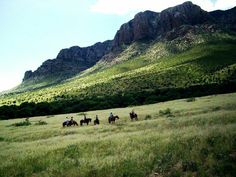 Hideout Ranch was started in 2008 and is a working cattle and guest ranch.