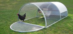 Have A Chicken Coop Up In 24 Hours Are you looking to build a chicken coop and would like to have one up no later than today? Whatever reason you'd like to build a chicken coop, either to raise food for you and your family or to cr Mobile Chicken Coop, Chicken Coop Decor, Portable Chicken Coop, Chicken Cages, Best Chicken Coop, Chicken Coop Designs, Backyard Chicken Coops, Chicken Coop Plans, Building A Chicken Coop