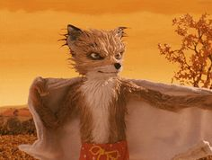 Fantastic Mr. Fox (2009) ~ Ash being jealous of his cousin Kristofferson