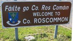 roscommon ireland - Google Search Roscommon Ireland, Erin Go Bragh, Holiday Destinations, Rose Petals, Wonderful Places, Irish, Places To Visit, Activities, Genealogy