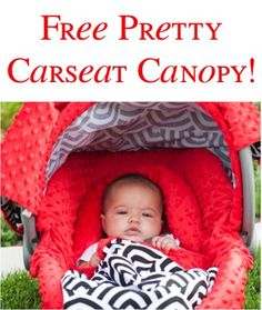 FREE Pretty Carseat Canopy! {just pay s/h}
