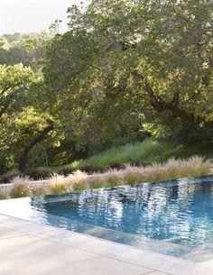 Vanishing Edge Pool - contemporary - pool - san francisco - Arterra LLP Landscape Architects