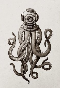 octopus carrying anchor - Google Search