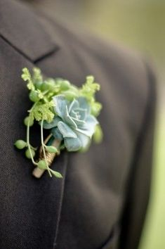 succulent boutonniere - with a small shell and less green perhaps. nice way to bring in the aqua color