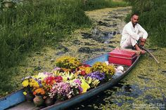 Fresh flowers on a Shikara.