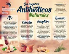 Los mejores antibióticos naturales