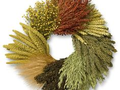 The air-dried grains and grasses in this gorgeous wreath include  flax , red broom corn, black sorghum and Highlander millet. $49.95;  williams.sonoma.com
