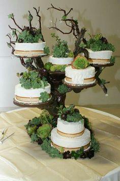 My beautiful succulent wedding cake! Love it!!!!!