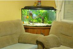 16 Ideas para aprovechar y decorar las esquinas de la pared en el hogar ~ Solountip.com