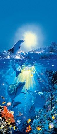 Dolphin in the Sun by Christian Riese Lassen - Marine Life 2 Sheet Door Mural