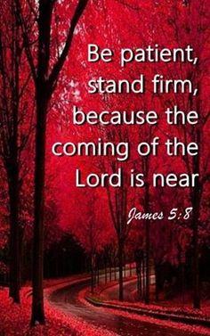 Seja paciente, fique firme, porque a vinda do senhor está próxima.