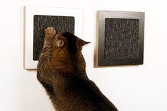 Square Cat Habitat :: Modern Cat Furniture