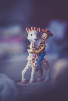 Ride like the wind, Sophie la girafe !   Flickr - Photo Sharing!
