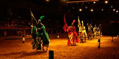 VIAJES TEIDE :: Medieval Night[Excursion from South]