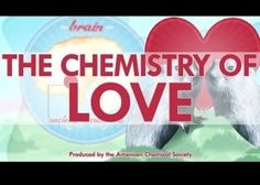 Video: The chemistry of love | EarthSky.org