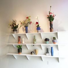 Please join us tonight 5-8pm for B.Zippy ceramics with Junzo Mori ikebana flowers! Waka Waka x DC furniture. @shinamal #junzomori @bzippy @mpawmpaw