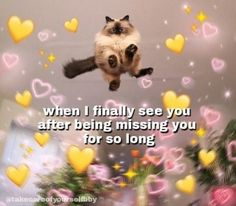 Funny Couple Memes I LOVE YOU in 100 different languages Necklace Best gift for your loved ones Cute Cat Memes, Cute Love Memes, Dankest Memes, Funny Memes, Cute Messages, Crush Memes, Relationship Memes, Wholesome Memes, Mood Pics