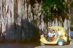 Como su vegetación #Molyvade #viaje #Cuba #LaHabana #Cocotaxi ¡Volvemos a viajar! http://molyvade.blogspot.com/2016/05/cuba-ii.html