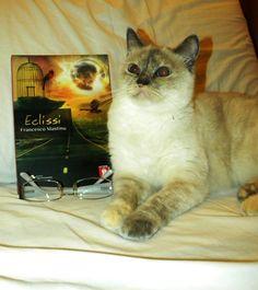 Eclissi e un lettore speciale!