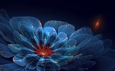 Incredibly Beautiful Fractal Flowers
